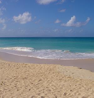 Beautiful Beach In Antigua